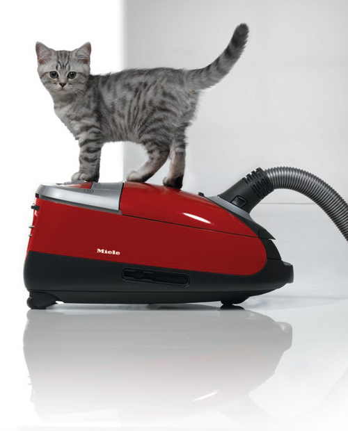 Miele Vacuum Cleaner C Cat And Dog